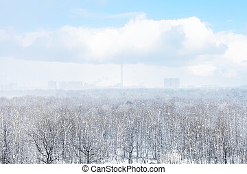 snow storm over city and forest in spring day