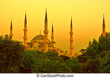 Golden Mosque - Blue Mosque of Istanbul in golden sunset...