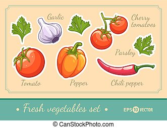 Set of fresh vegetables cherry tomato pepper garlic chili and parsley