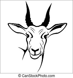 Antelope - Vector illustration : Antelope on a white...