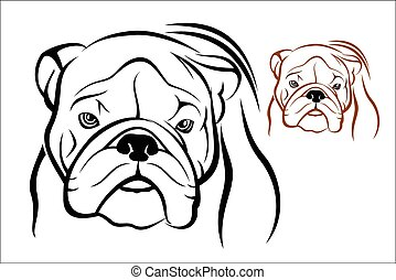 English Bulldog 1 - Vector illustration : English Bulldog on...