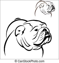 English Bulldog 2 - Vector illustration : English Bulldog on...