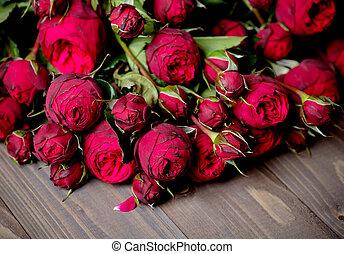 Peony- rose on wood background