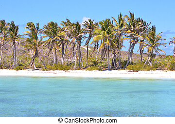 isla contoy sand in wave - blue isla contoy in mexico froath...
