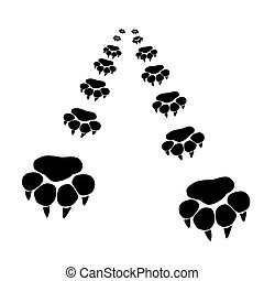 Footprints of a big cat