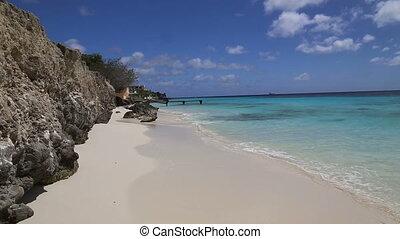 wild caribbean sea beach
