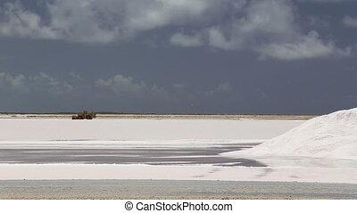 caribbean salt lake mining work