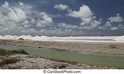 caribbean salt lake mining work