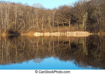 Marthaler Park and Pond Morning Glow - marthaler park and...
