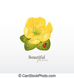 Yellow cherry flower with leaves and ladybug Logo of yoga...