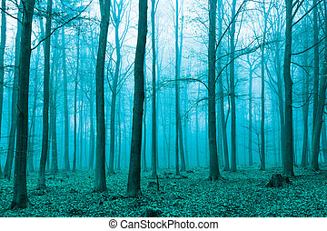 Fantasy forest in fog in Green