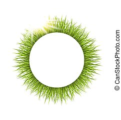 Circle frame with grass and sunlight. Floral nature background