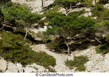 Calanque Of Marseille - Calanques of Port Pin in Cassis in...