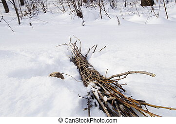 Bundle of a brushwood on a snow - Photo of a brushwood that...