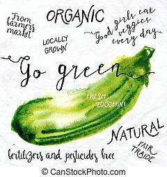 Watercolor zucchini - Vector illustration of watercolor...