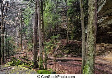 Hocking Hills Hiking Trail - A hiking path winds through the...