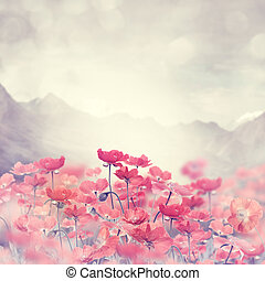 Poppy Flowers - Field Of Bright Red  Poppy Flowers