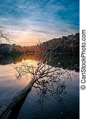 Levers de Soleil, sur, triton, Lac,