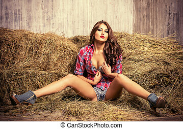 luxury - Seductive young woman in jeans shorts and a plaid...
