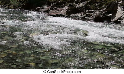 Small Rapids American River - Small Rapids On North Fork Of...