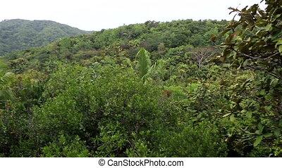 Topography of the Vallee de Mai Nature Reserve - Vallee de...
