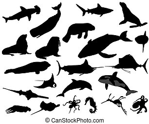 sea animals - Collection of silhouettes of different species...