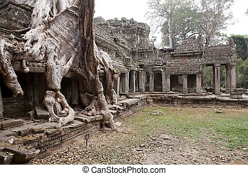 Preah Khan - Tree roots on the gallery and gopura at the...