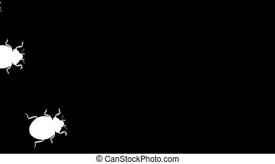 Walking beetles - Animation of beetle silhouettes scuttling...