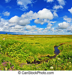 The warm summer day - Iceland in July. Green fields and...