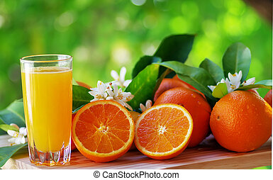 Orange juice in glass, blossom and slice of oranges