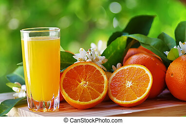 Orange juice in glass, blossom and slice of orange fruit