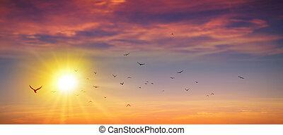 Panoramic wild sunset