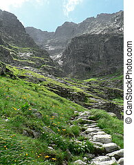 mountain trail - The photo shows a mountain trail in the...