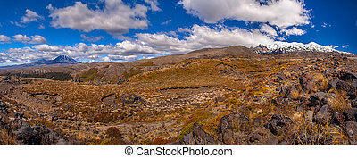 Panorama of Tongariro National Park with both Mt Ngauruhoe...