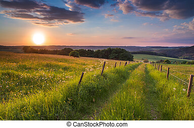 sunset trail germany hill