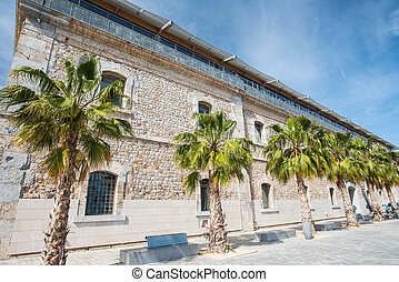 public building with palms at high noon in Spain