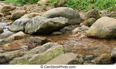 young woman hands with the stream water  stream water flow