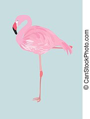 Pink flamingo - Pink flaming on blue background.