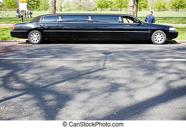 Unrecognizable limo driver waiting in a park.