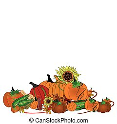 pumpkin patch on white - assorted pumpkins with...