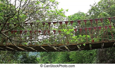 hiking on wooden suspension bridge - hiking woman walking on...
