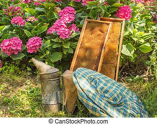 apicultura, equipo,