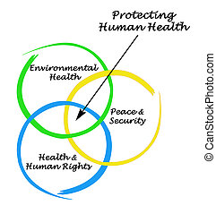 Diagram of protecting Human Health