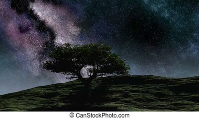 Time lapse purple night sky stars over the hill with tree