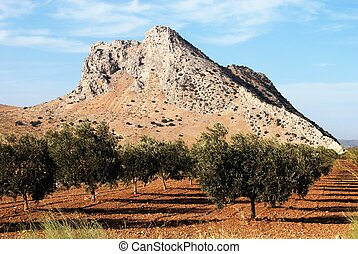 Lovers mountain, Antequera - View of Lovers Mountain with an...
