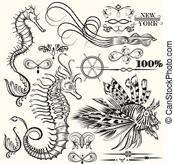 Collection of vector hand drawn sea elements - Vector set of...