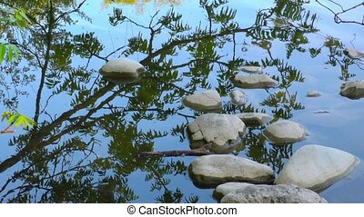 Stones on Green Lake