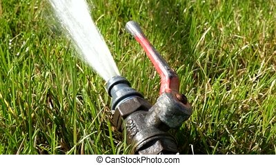 Water sprinkler in fresh green grass working footage