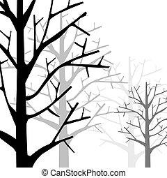 Forest Monotone - Forest in Monotone