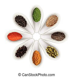 Spices in the spoons isolated on white vector - Spices in...